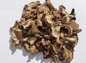 Risoto al funghi secchi