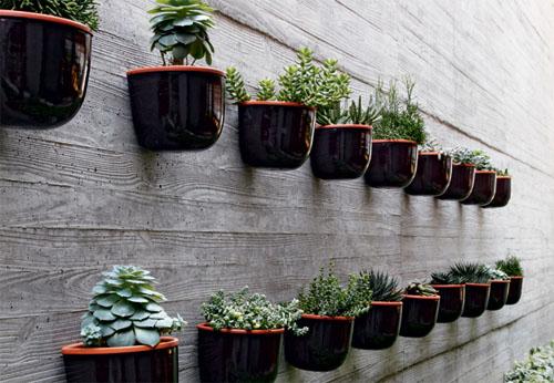 jardim vertical vasos meia lua : jardim vertical vasos meia lua:Parede de suculentas